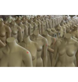 Headless damesfiguren van exclusief A-merk