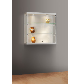 Luxe vitrinekast aluminium 100 cm wandkast met glas