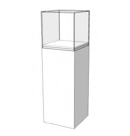 Vitrinekastje met legvak boven en deurvak onder C-PKL-006