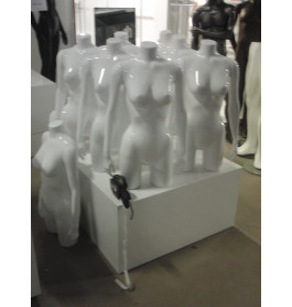 glossy witte Damestorso's met armen