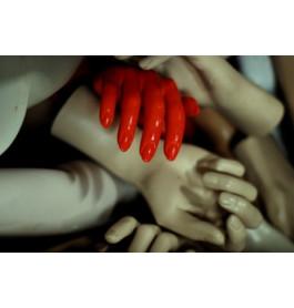 5 exclusieve A-merken dameshanden