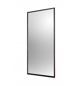 Zwart frame met spiegel - 988 x 1984 mm