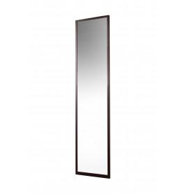 Zwart frame met spiegel - 500 x 1984 mm
