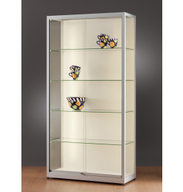 Luxe vitrinekast aluminium 100 cm met achtergrond
